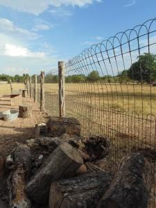Fence Around Paddock